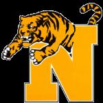 Normal Tiger N Logo-small