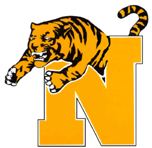 Normal Tiger N Logo-small