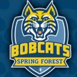 spring-forest-logo